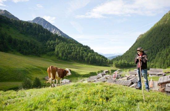 Una vacanza per seniores all'insegna dei piaceri culinari e delle escursioni